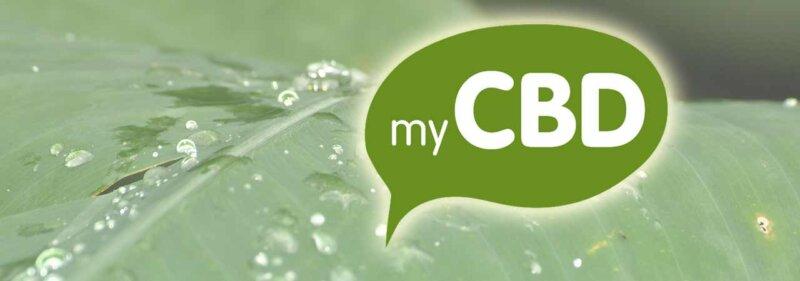 mejores aceites de cbd mycbd es uno de los mejores con cañamo ecológico de Europa