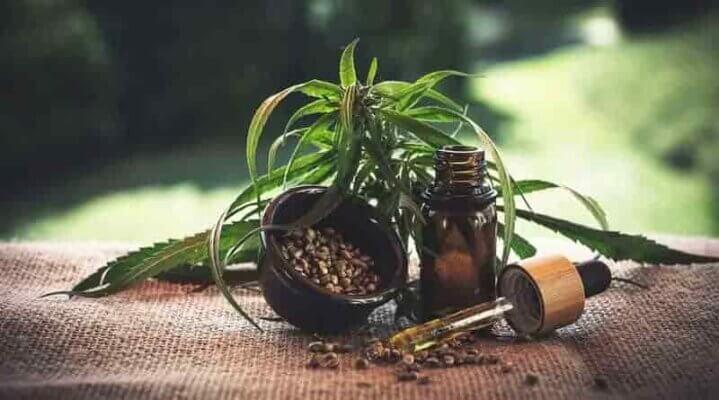 el mejor aceite de semillas de cannabis o marihuana medicinal