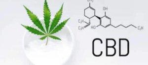 compra online balsamo medicinal de marihuana terapeutica cannabidiol