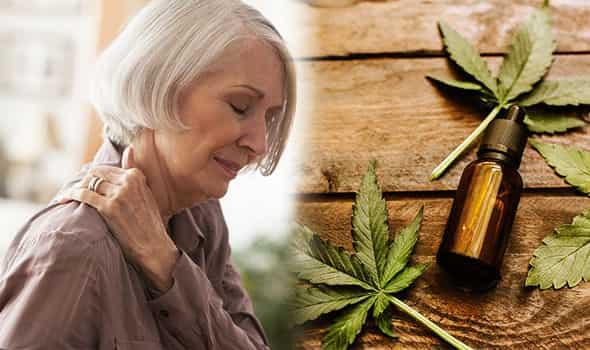 cbd para fibromialgia ayuda con el dolor crónico cannabis medicinal marihuana terapeutica