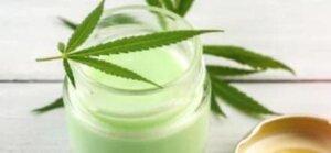 cremas de cannabis medicinal semillas de cañamo ecologico legal