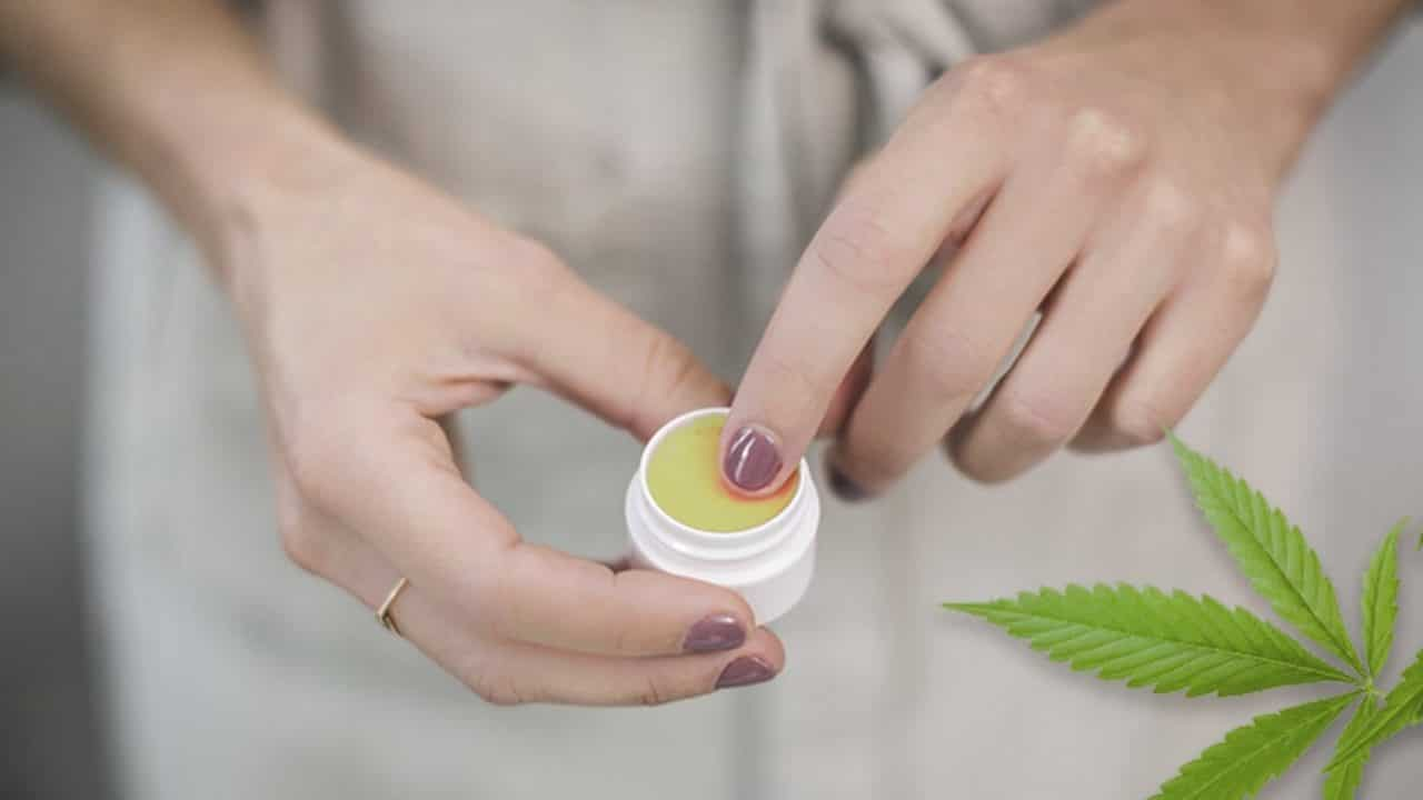 comparativa de cremas de marihuana legal cannabis medicinal